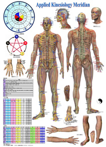 Applied Kinesiology Charts